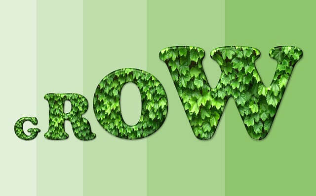 Spirulina.network is Growing – Lets Grow Together!