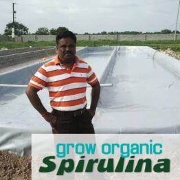 spirulina raceway ponds construction- video consulting session with Avel Jay