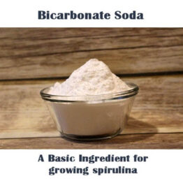 bicarbonate soda for growing spirulina