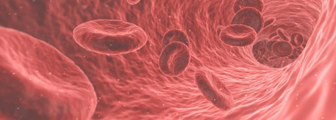 The Benefits of Spirulina for Anemia Patients